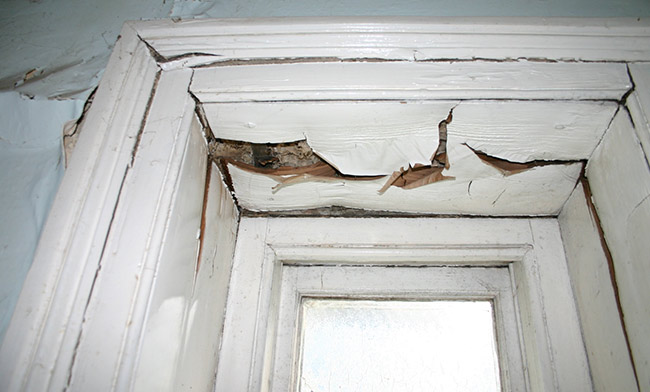 Signs of damp. Cracked window frame caused by rot